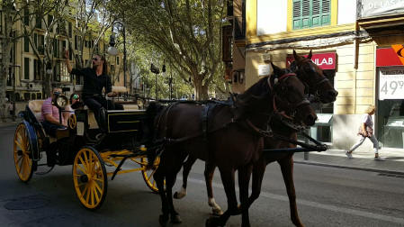 Horse and carriage in Palma 2016